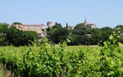 Entre-Vignes, France
